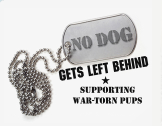 Support  Strays for Soldiers