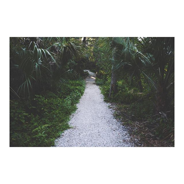 Paths to nowhere and everywhere • •  #yourhomewithin