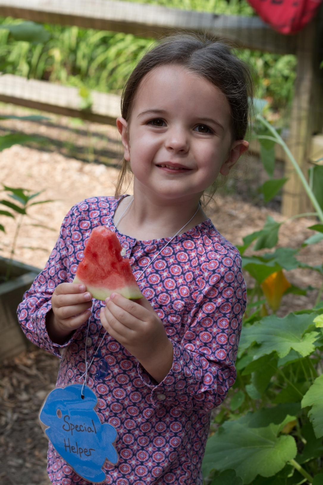 Watermelon Social - On the last day of the school year, all students and parents are invited to the playground for a watermelon social.  Families bring picnic lunches, and celebrate all of the ways their children have grown and learned over the school year!