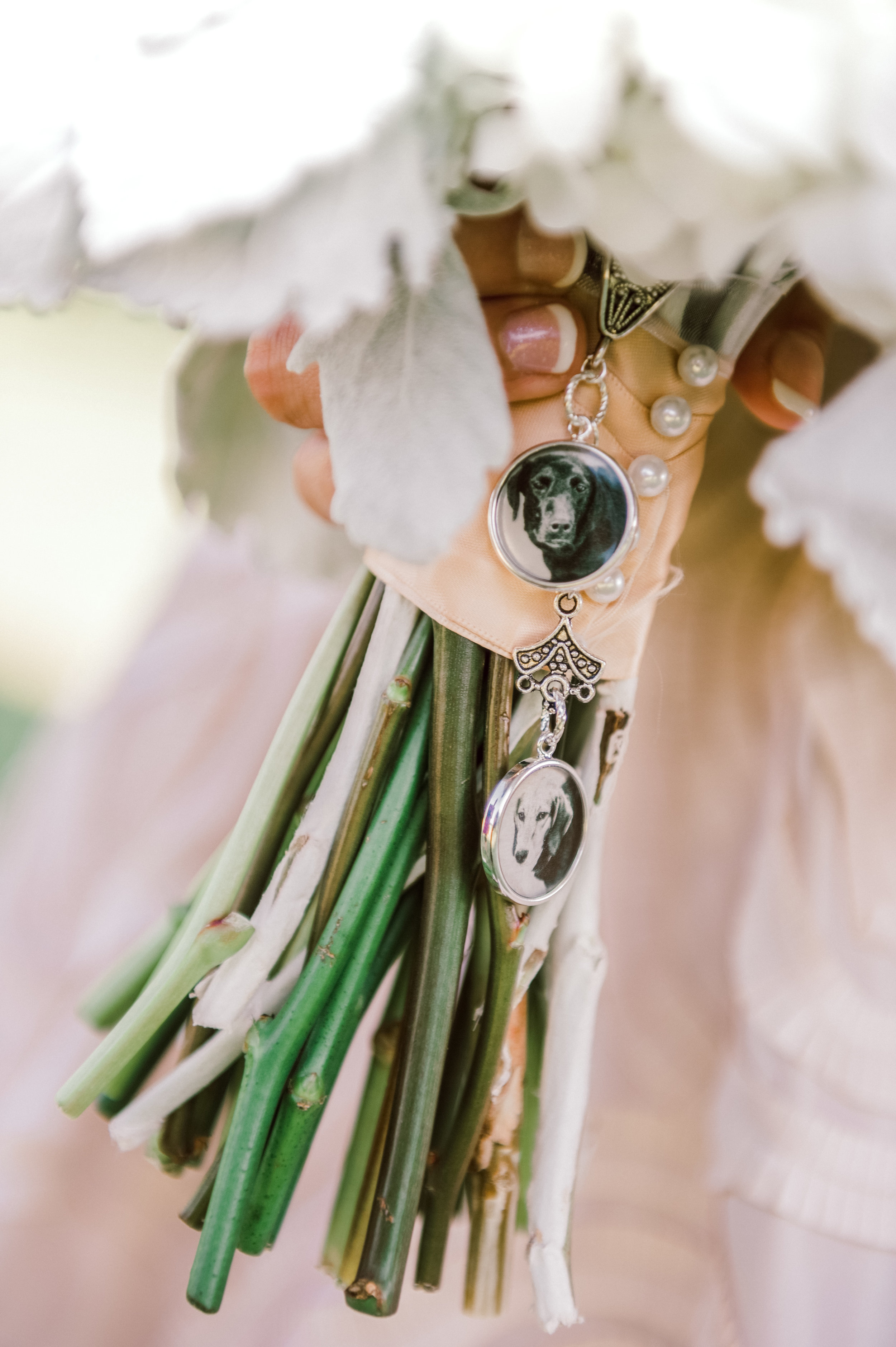 Silverbrook-Farm-Weddings-Virginia-38.jpg