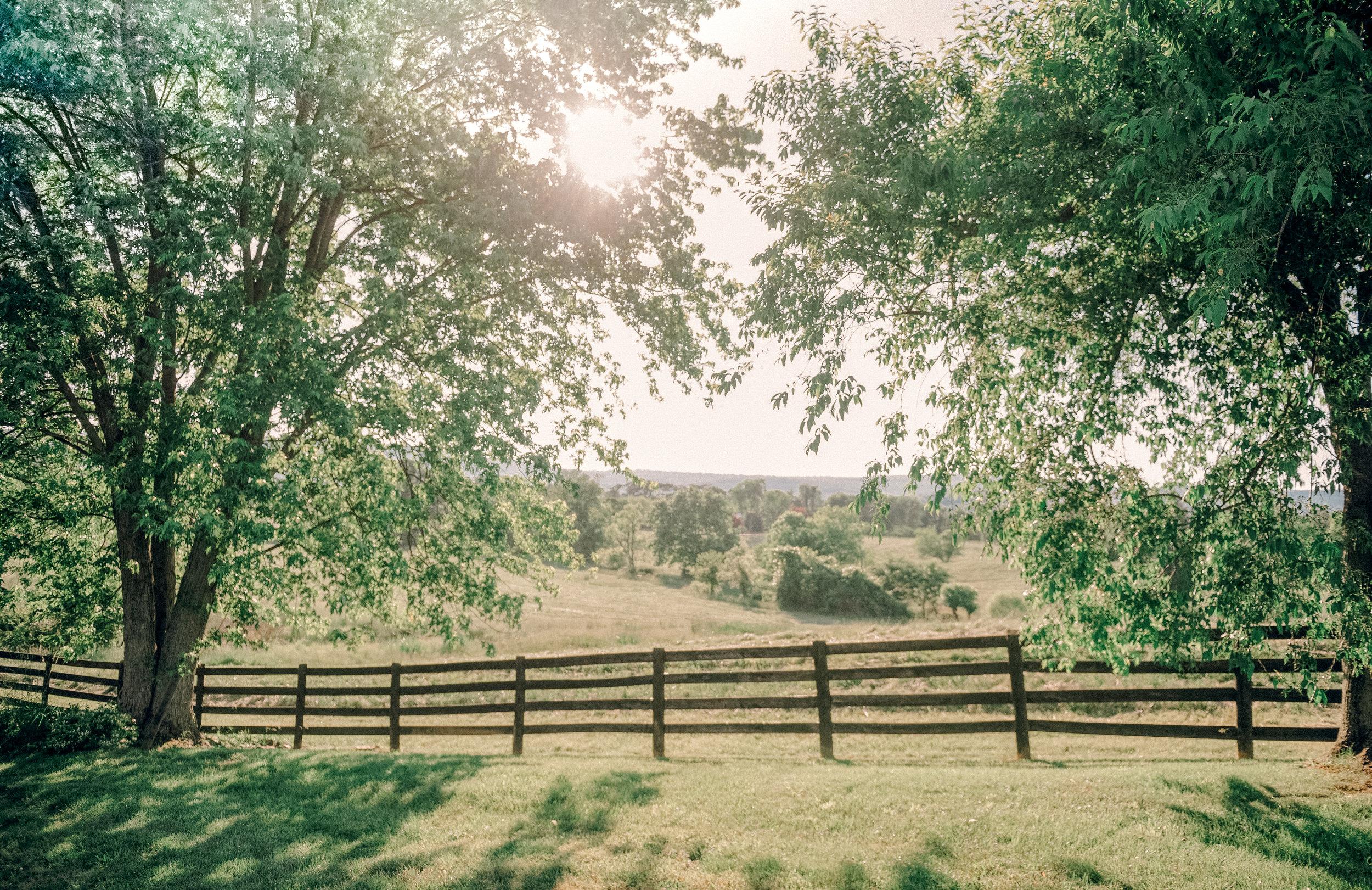 Silverbrook-Farm-Weddings-Virginia-40.jpg