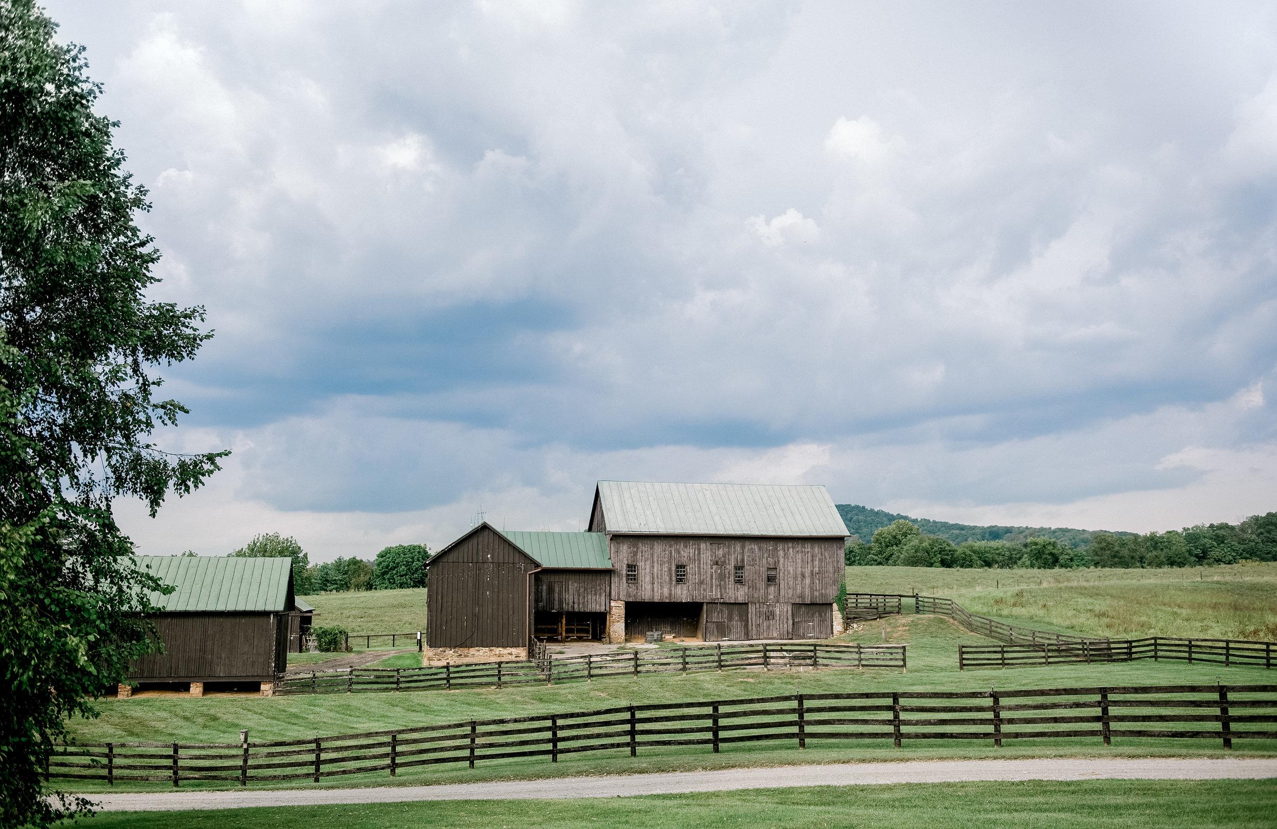 Silverbrook-Farm-Weddings-Virginia-32.jpg