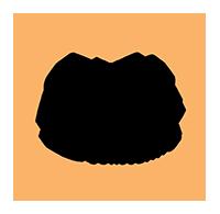 Stella Logo-Main copy.png