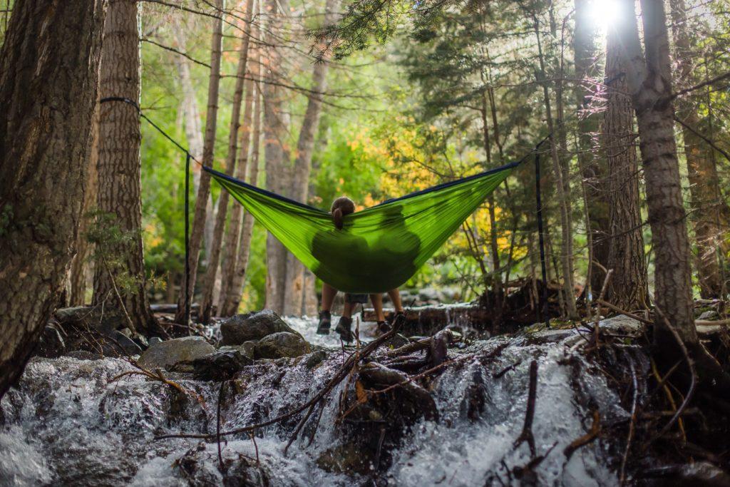 hammock5-1024x683.jpg