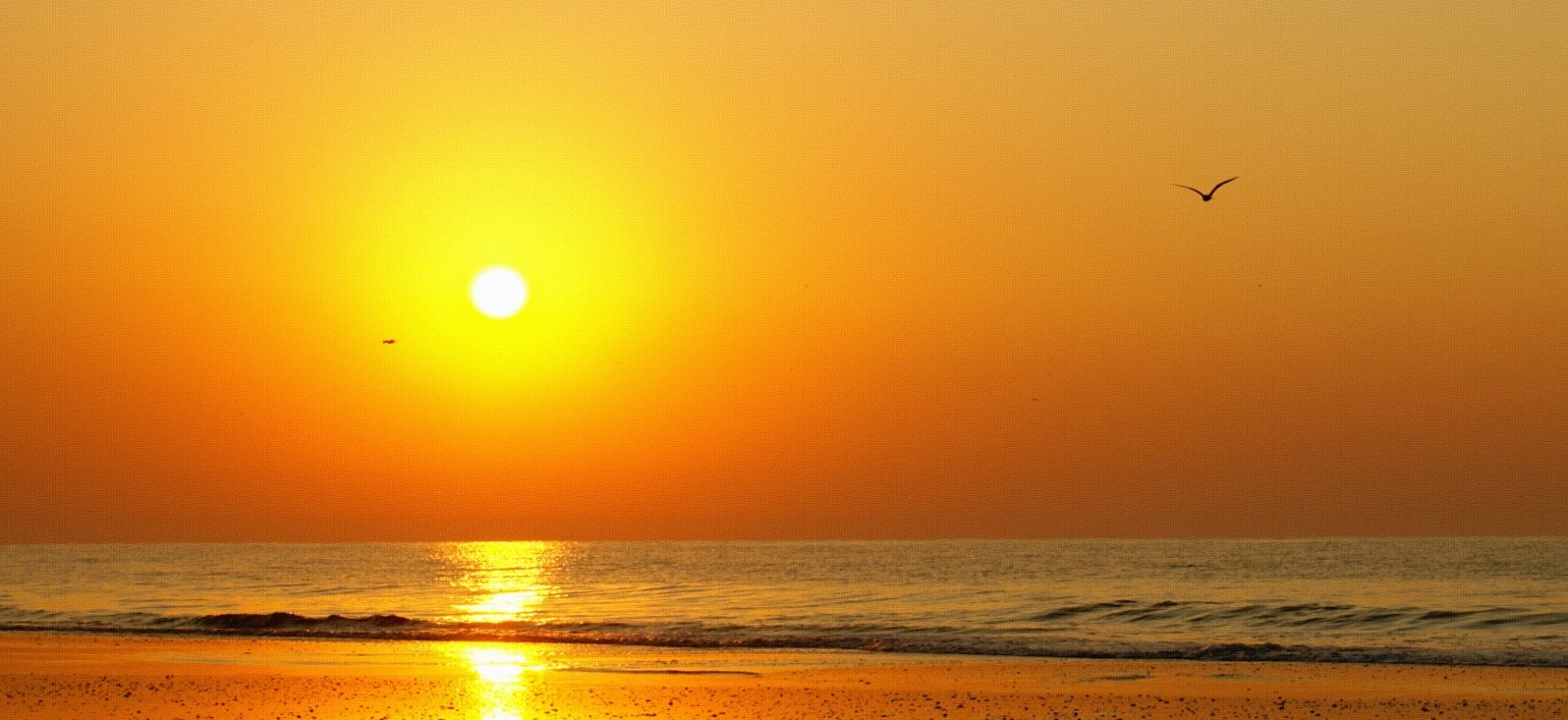 Sun-on-beach.jpg
