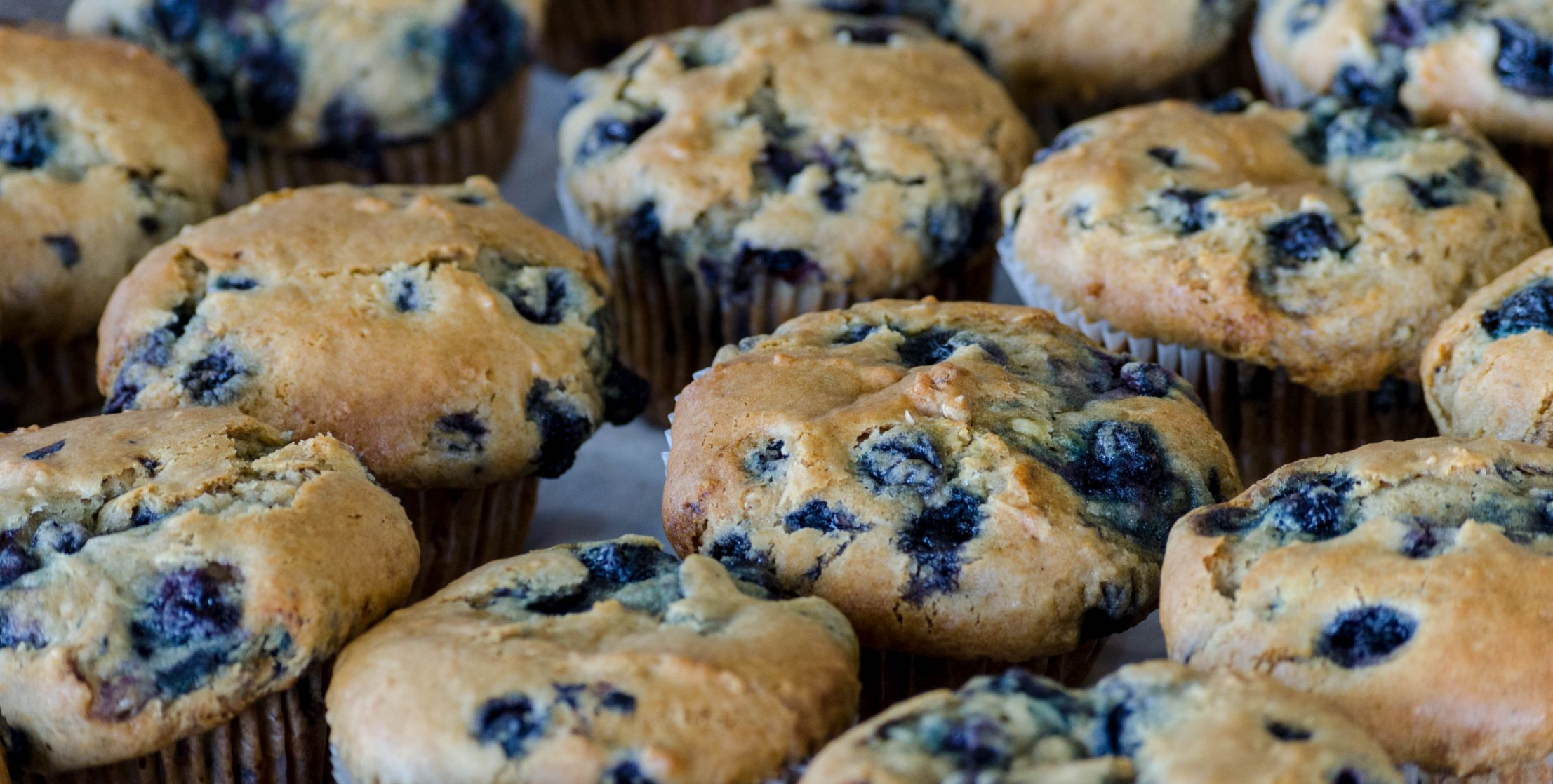 Blueberry Muffins from Broadway Daily Bread at Alamo Heights.jpg