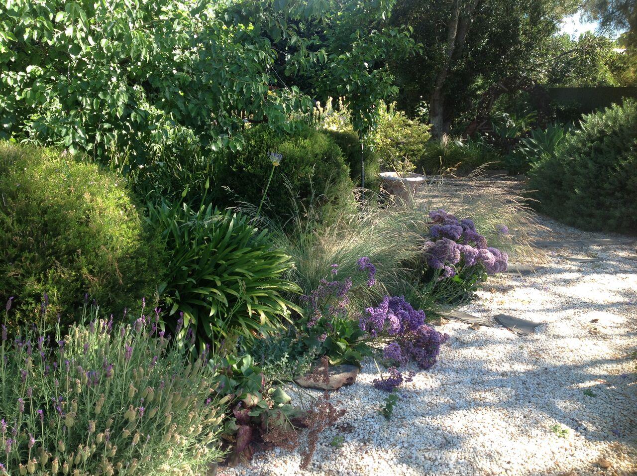 Adelaide Plains Mediterranean Garden
