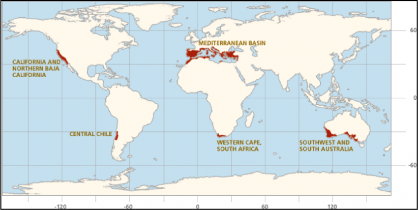 Mediterranean Climate Regions Credit - Coastal Southern California Science &Learning