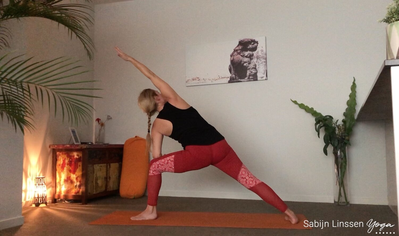 Yoga Savasana Housing