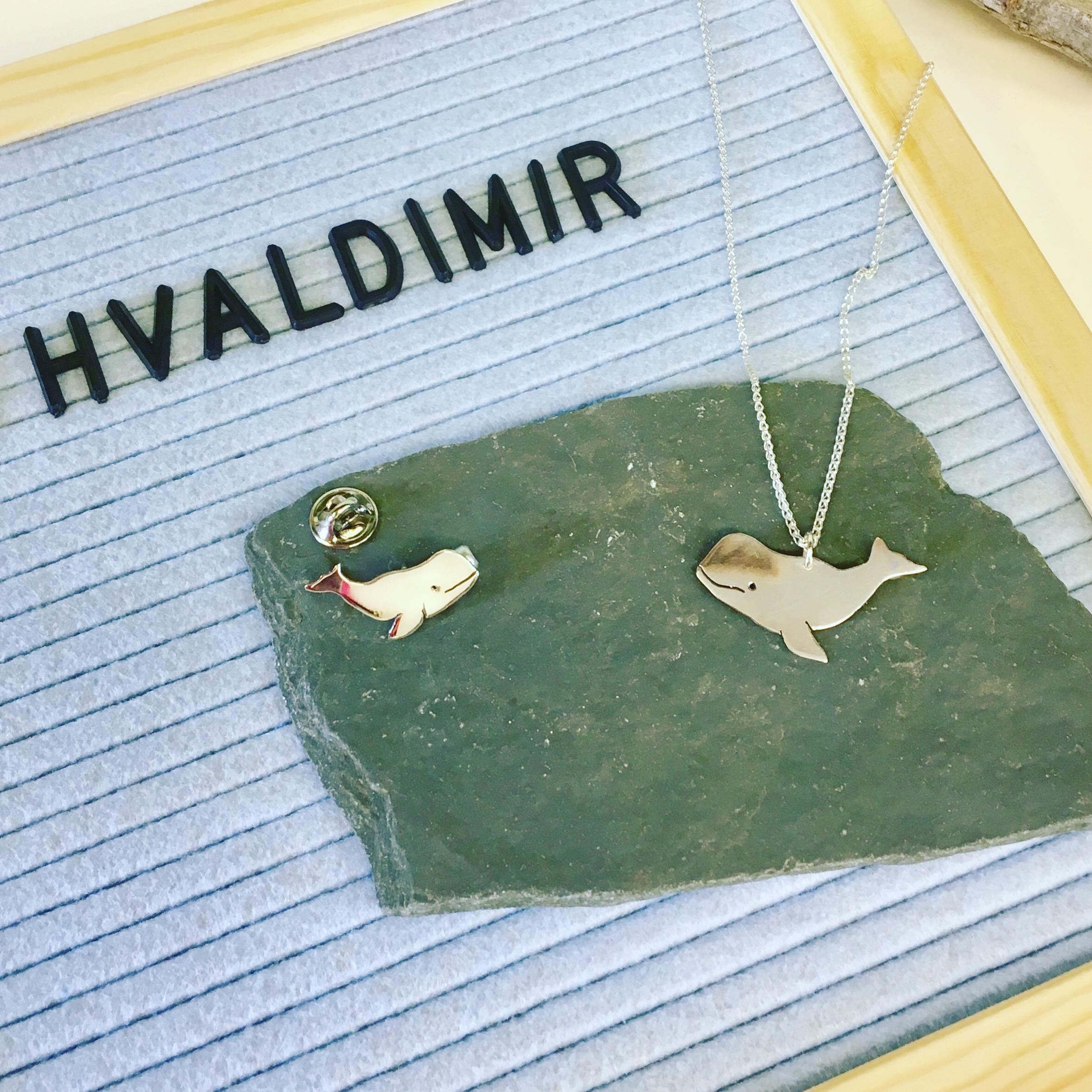 Hvaldimir, the white beluga whale