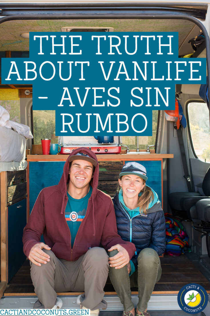 The Truth About Vanlife - Aves Sin Rumbo