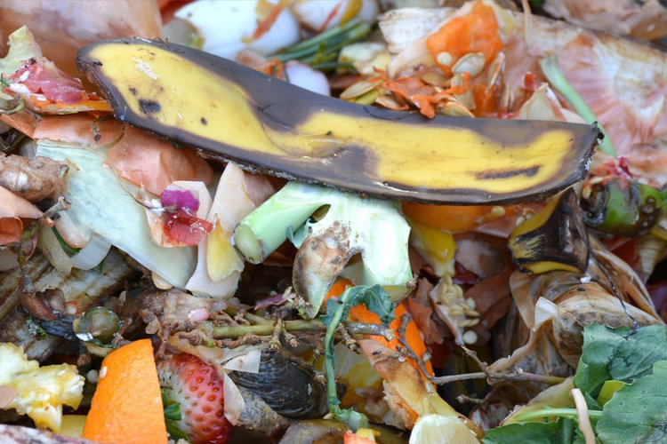 A close-up shot of a pile of food scraps on it's way to becoming compost.