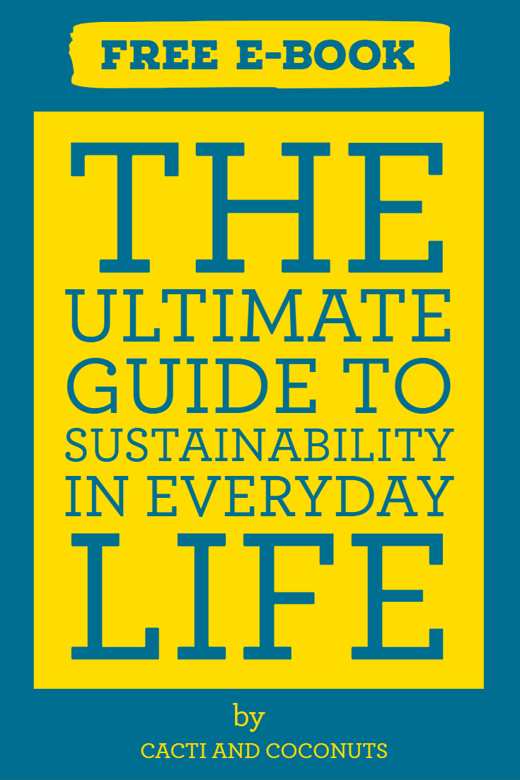 The Ultimate Guide to Sustainability in Everyday Life