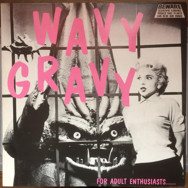 Wavy Gravy, inspiration in compilation form…