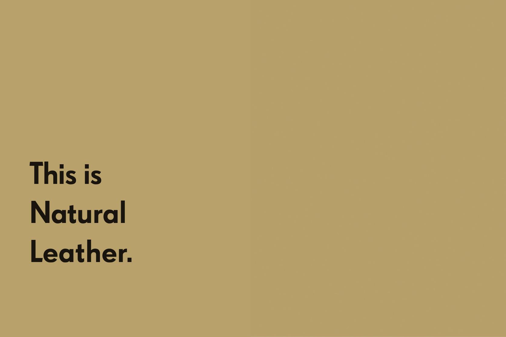 Julia-Kostreva-Studio-Branding-Joshu-Vela--Typography-Sample-Campaign-This-is-Natural-Leather.jpg