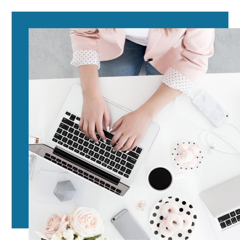 Social Media Management | The Talking Fox