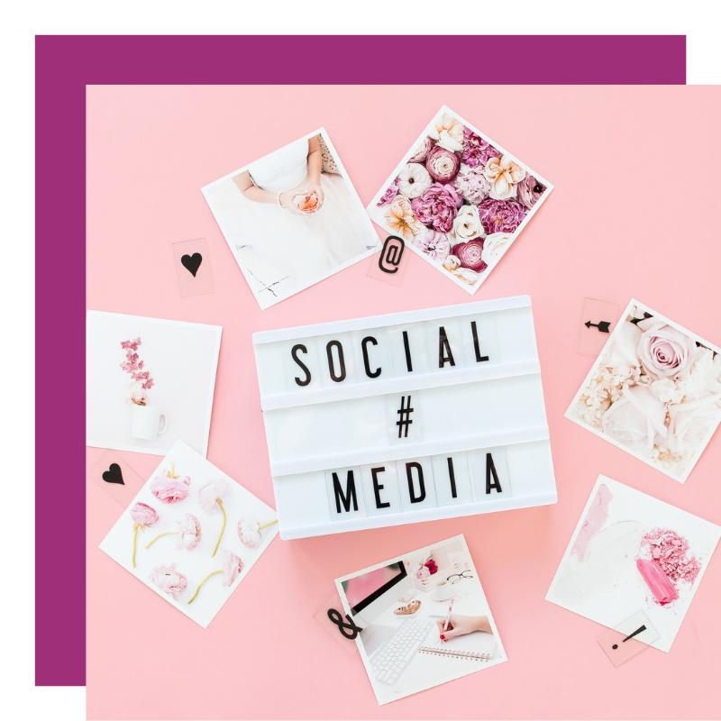 Social Media Strategy | The Talking Fox