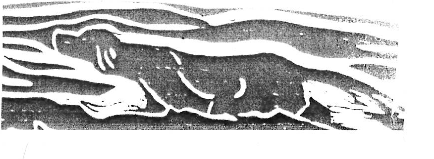 Xilografia originale