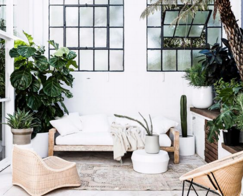 Dreamy living spaces showcasing neutral tones and lots of indoor greenery. Image Via Pinterest.