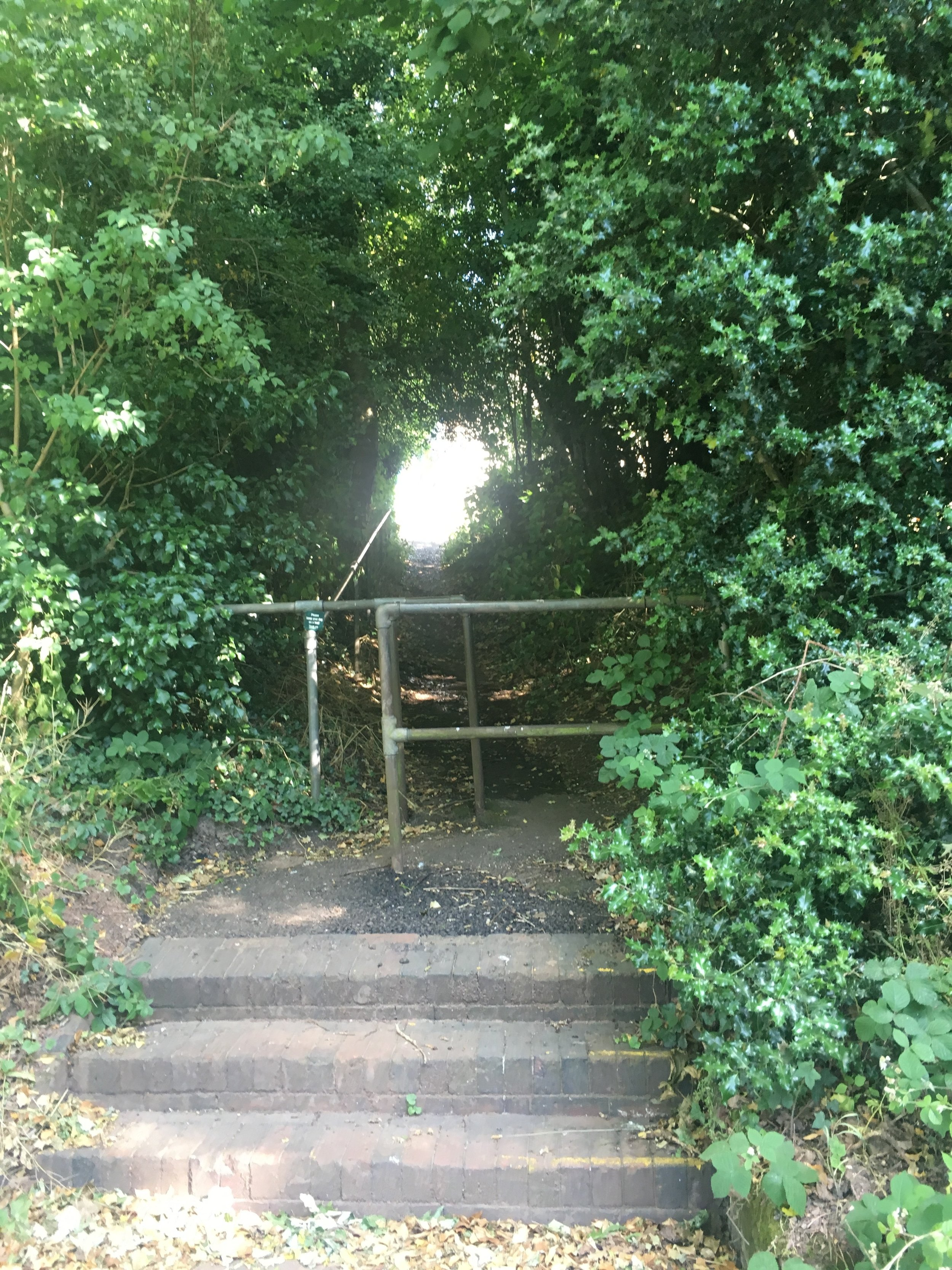 Continue up the steps and path, gorgeous 5 min walk done!!! -