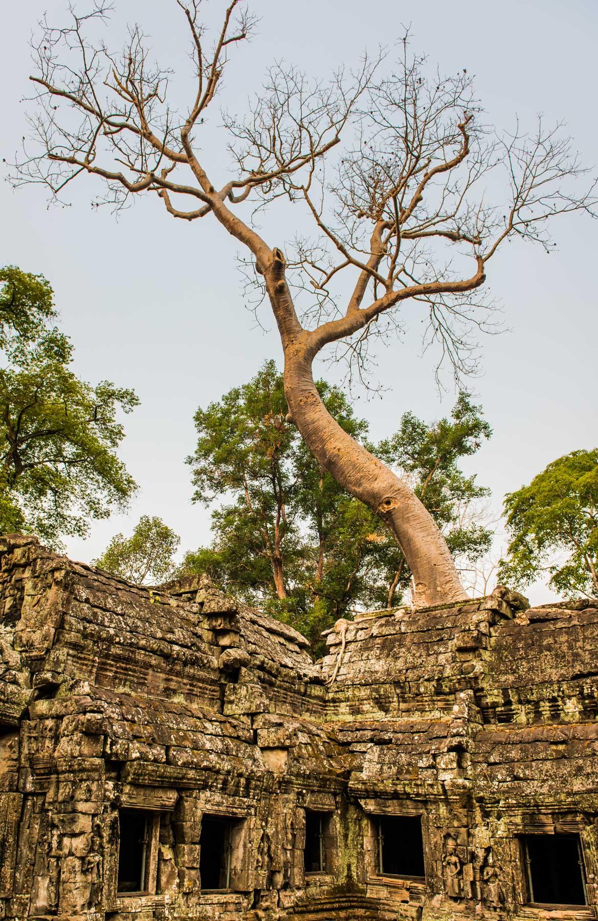 Cambodia Portfolio  (51 of 106).jpg
