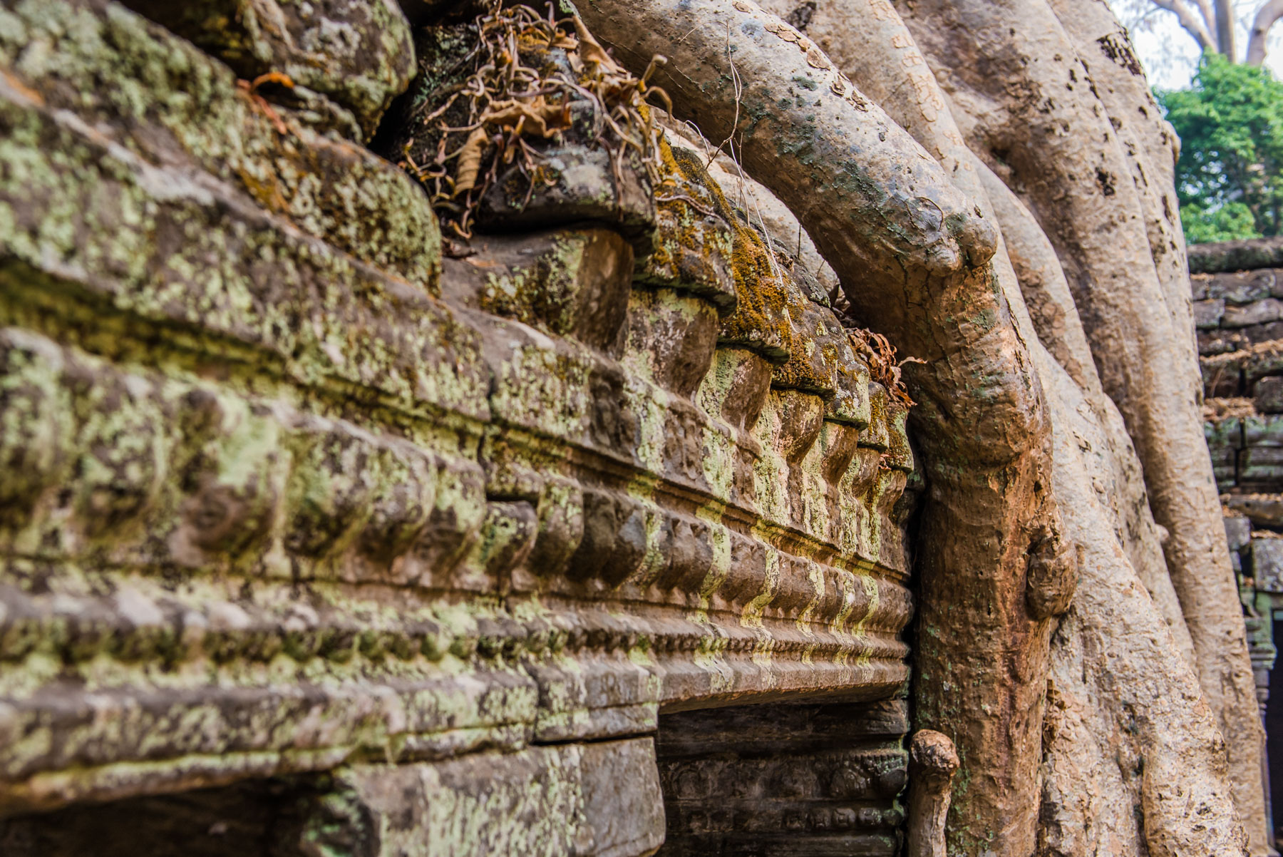 Cambodia Portfolio  (66 of 106).jpg