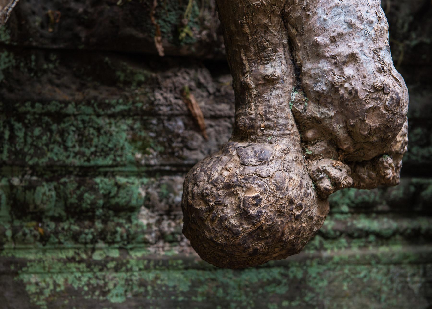 Cambodia Portfolio  (68 of 106).jpg