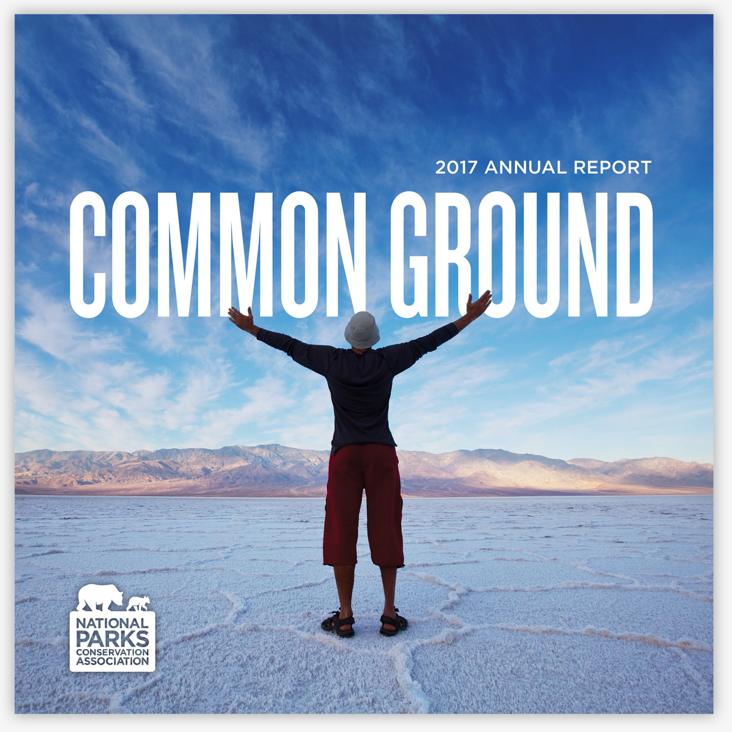 Common Ground  – 2017 Annual Report
