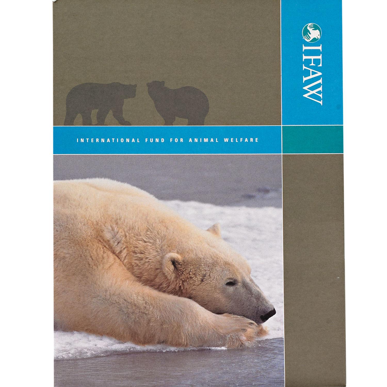 polarbear-folder.jpg