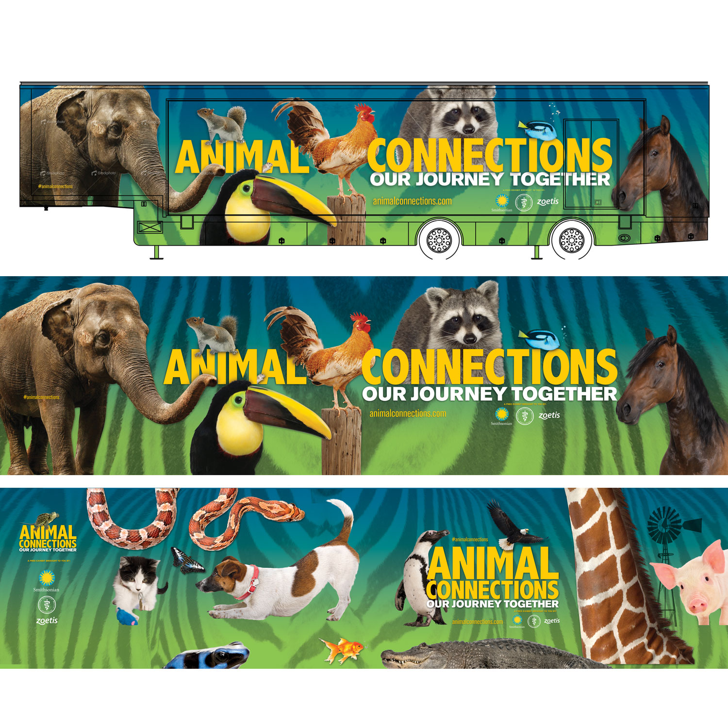 Animal Connections  – Exhibition Graphics