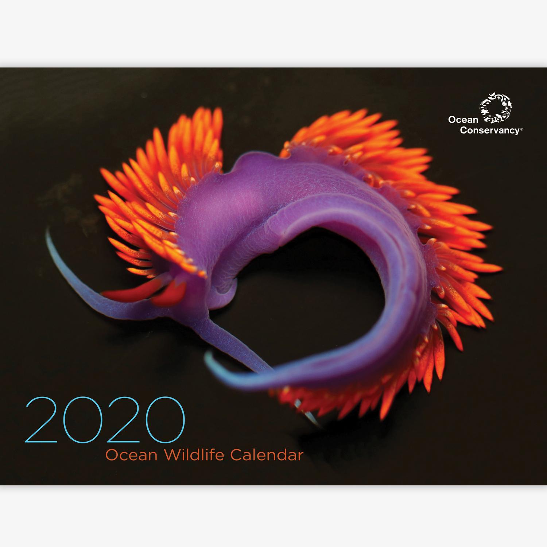 2020 Member Calendar