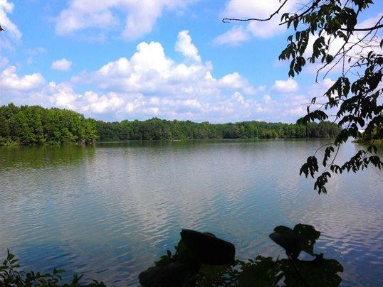 legacy shores lake tellico.jpg