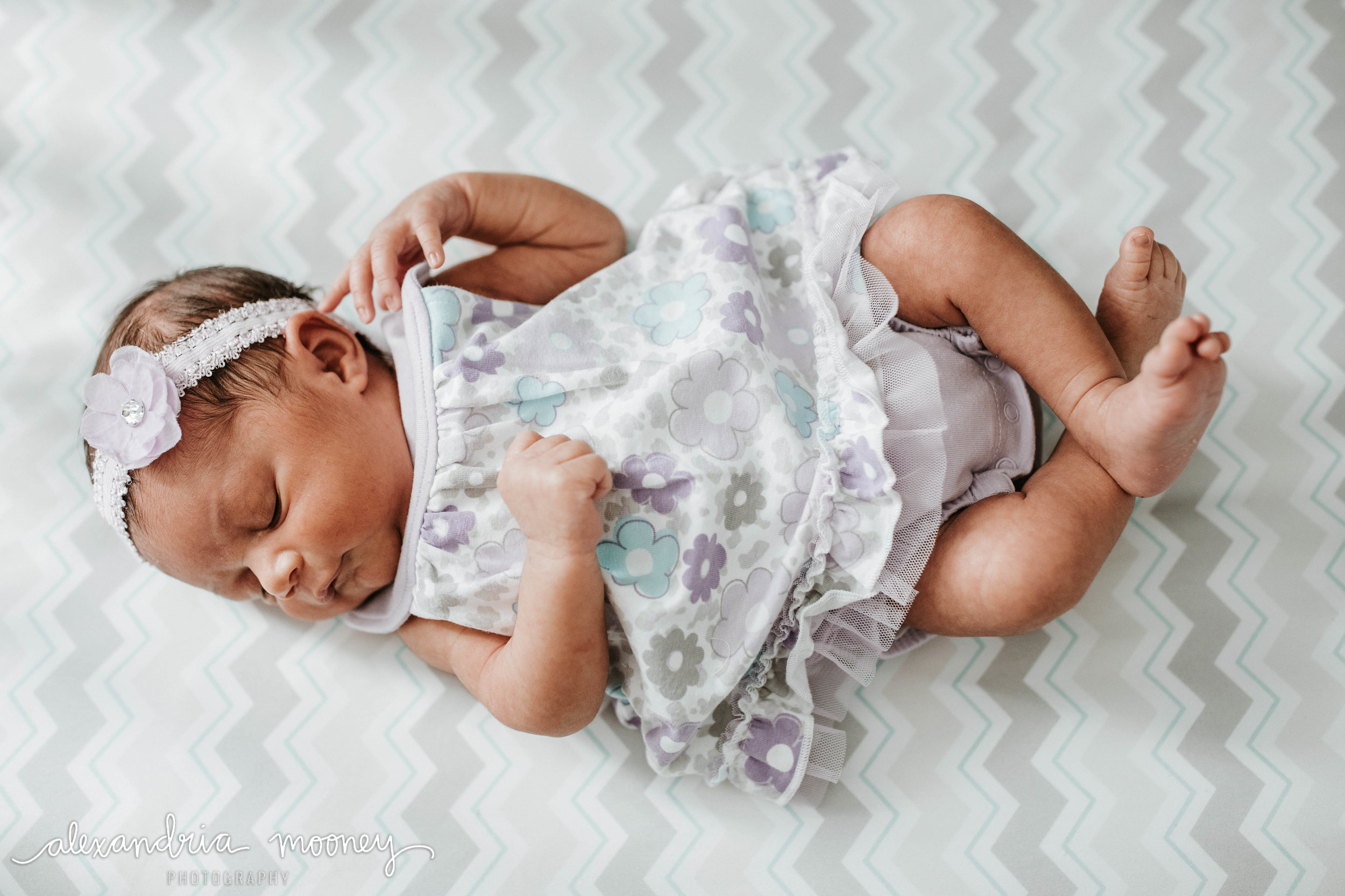 Callie_Newborn_WATERMARKED-28.jpg