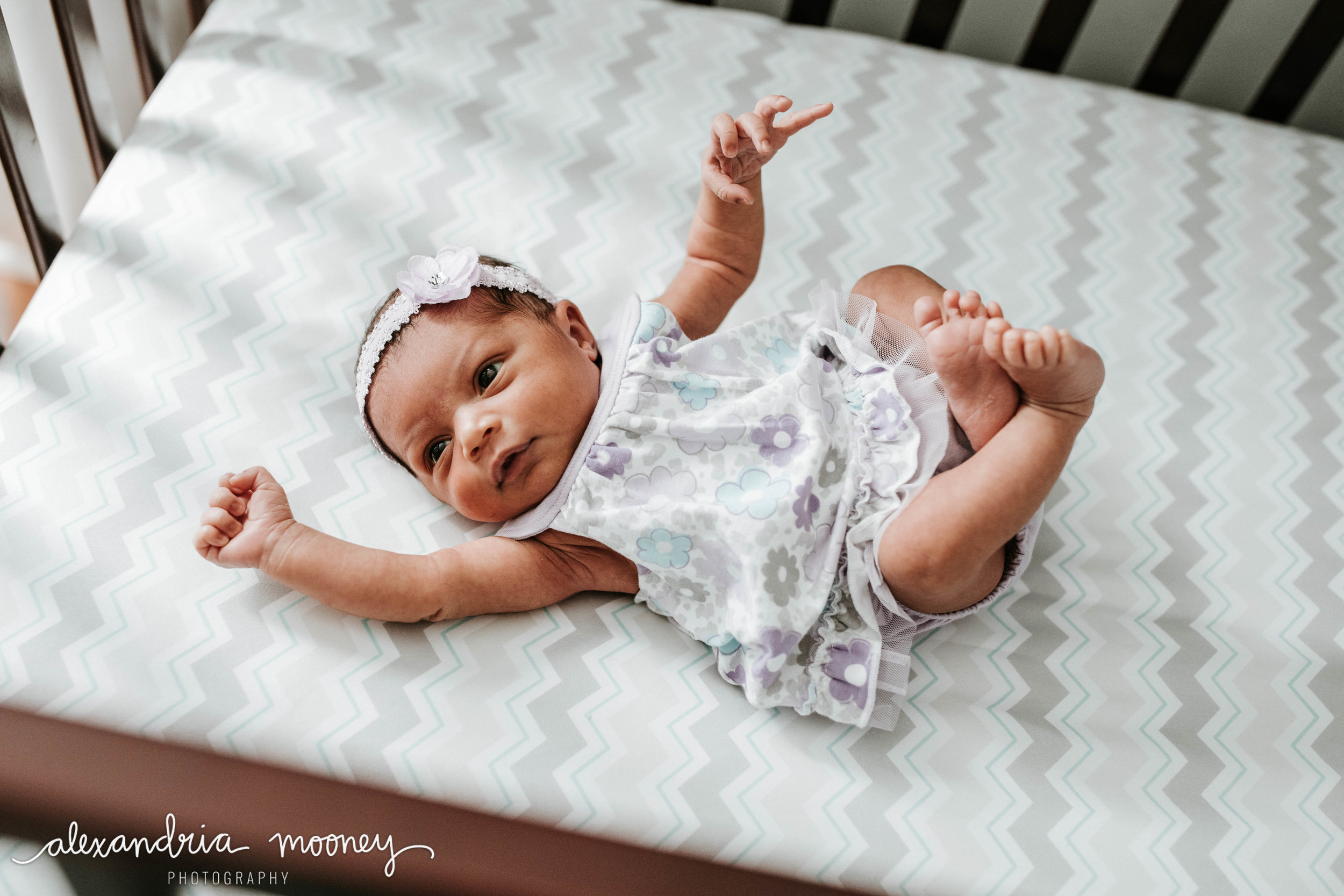 Callie_Newborn_WATERMARKED-30.jpg