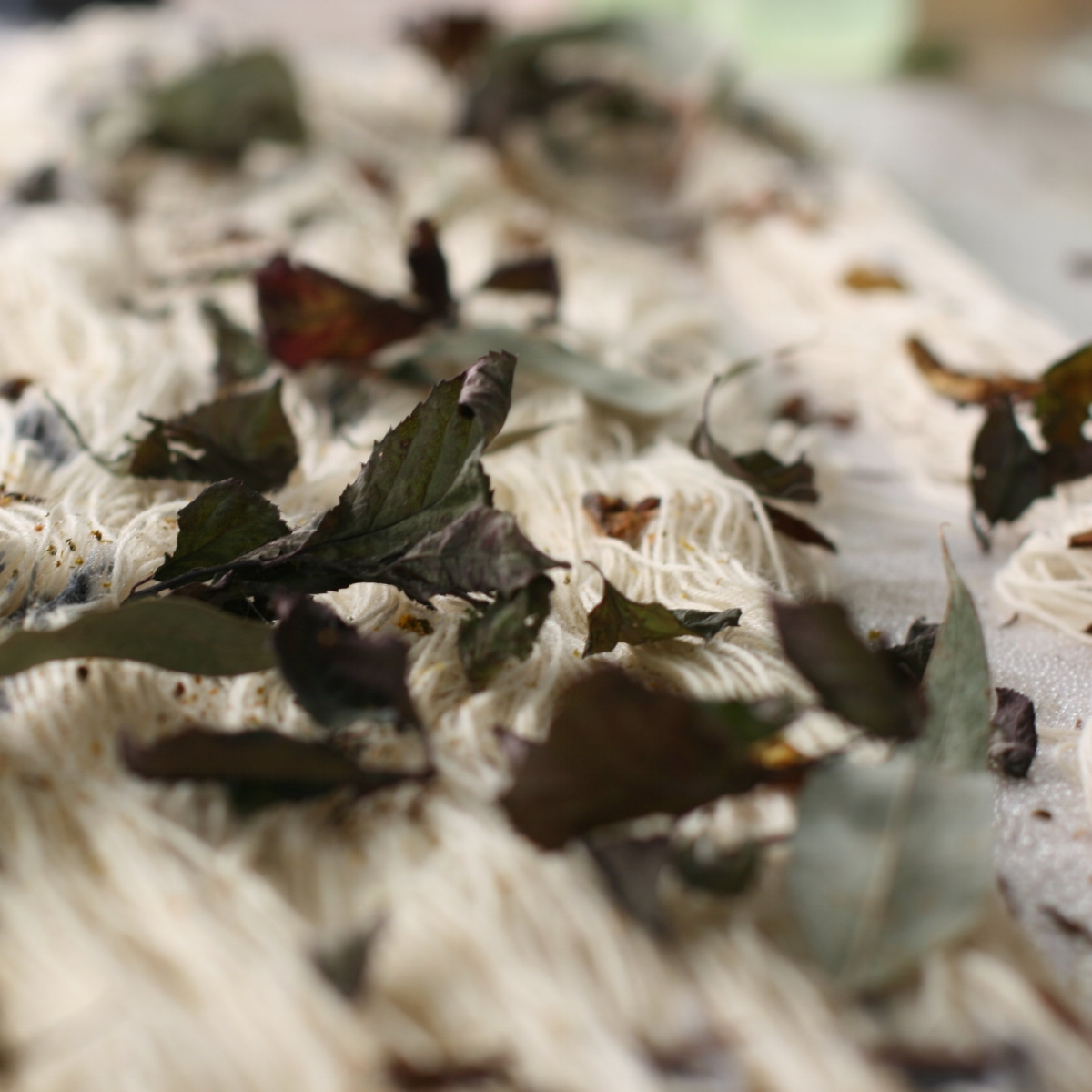 openstudio79-natural-color-botanical-dye-purlandpoem-eucalyptus.JPG