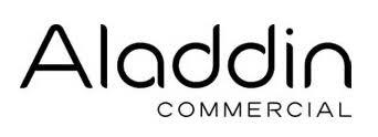 Aladdin Commercial.jpeg