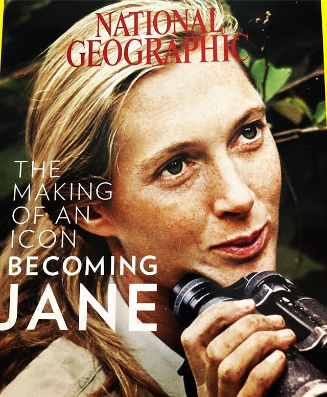 85 Years Young- Happy Birthday Jane🎉🎉🎂@janegoodallinst I grew up following your adventures in the pages of @natgeo on TV and thru books. Thank you for continuing to inspire us. Cheers 🥂 to many more❤️. • • • • • •  #generationjane  #drjanegoodall  #drgoodall  #inspirational  #janegoodall  #birthdaygirl  #celebration  #agelessbeauty  #aginggracefully  #ageless  #empowerwomen  #inspirationalwoman  #embraceyourage  #femaleinspiration  #embraceage  #passionista
