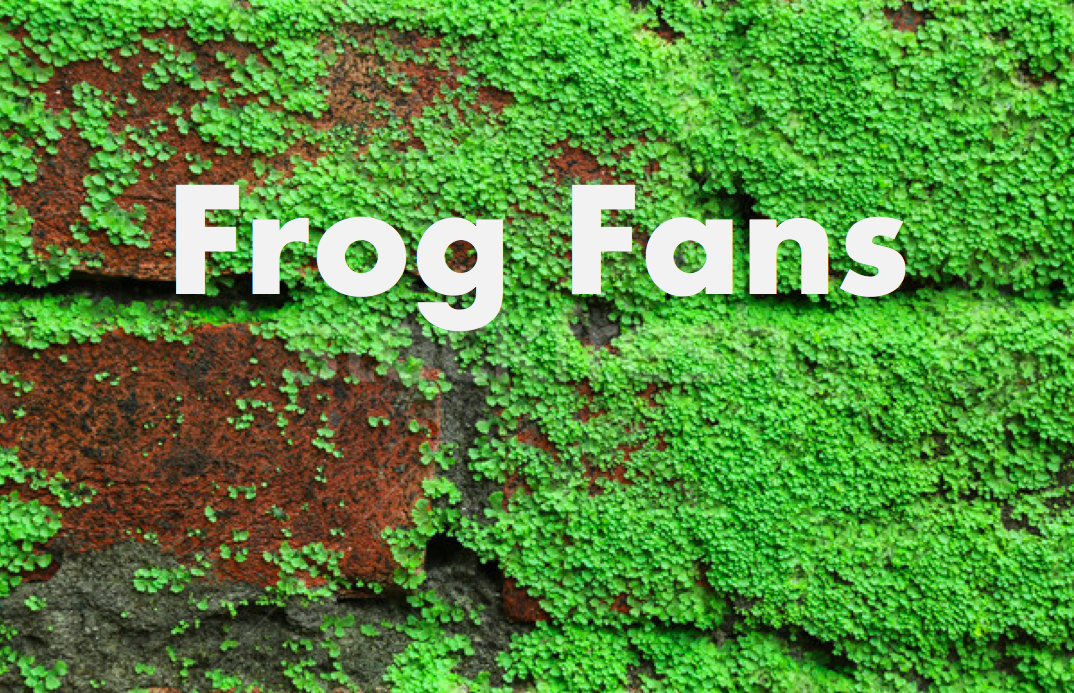 FrogFansPicture.png
