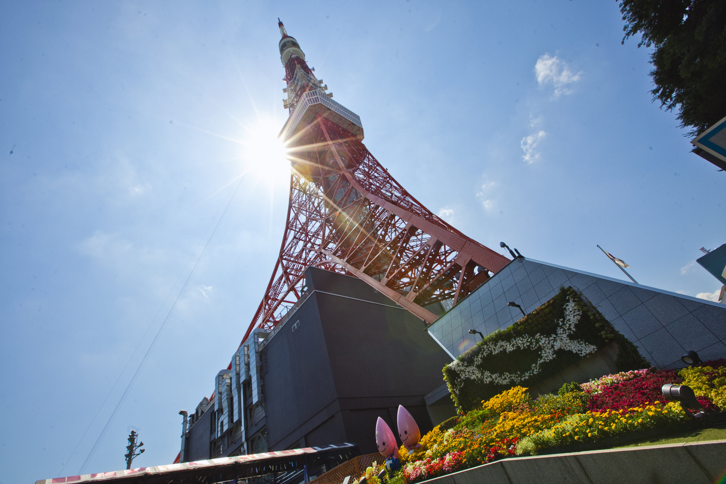 tokyo tower sun3.jpg