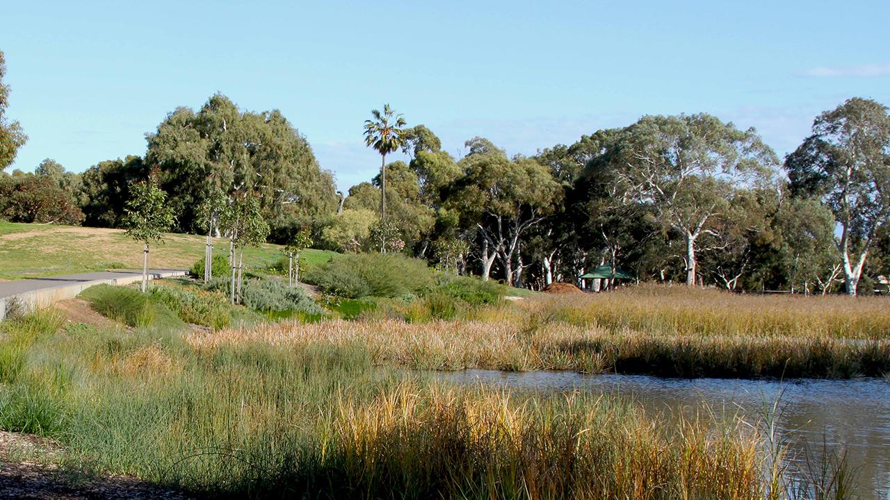 06-Oaklands Park and Wetland-Sam Noonan MASTER.jpg