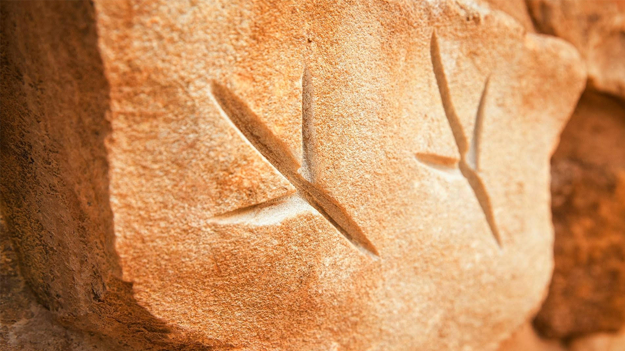 10- Mukanthi Nature Playspace- Allan Sumner MASTER.jpg