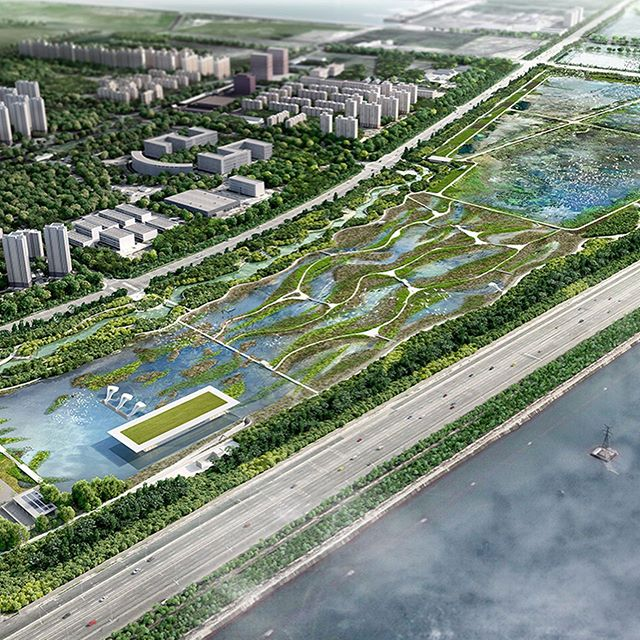 The Lingang Bird Airport proposal by @mcgregorcoxall  showcases the exciting opportunity that exists when we reclaim spaces within our cities for critical habitat. The proposal would provide habitat for 50 million brids within the East Asian-Australian Flyway (EAAF). One fifth of globally threatened waterbirds fly the EAAF and the corridor is the world's most threated due to coastal urbanization. . . 2018 NATIONAL LANDSCAPE ARCHITECTURE AWARD - INTERNATIONAL . . #landscapearchprojects #landscapearchitects #landscapearchiture #landscapearch #lingangbirdairport  #mcgregorcoxall #lingang #tianjin #CHINA #parklands #openspace #water #infrastructure #wetland #wetlanddesign #bird #birds #birdmigration  #birdsanctuary #birdairport #EAAFP #designedbyalandscapearchitect #aila . . @aila_national