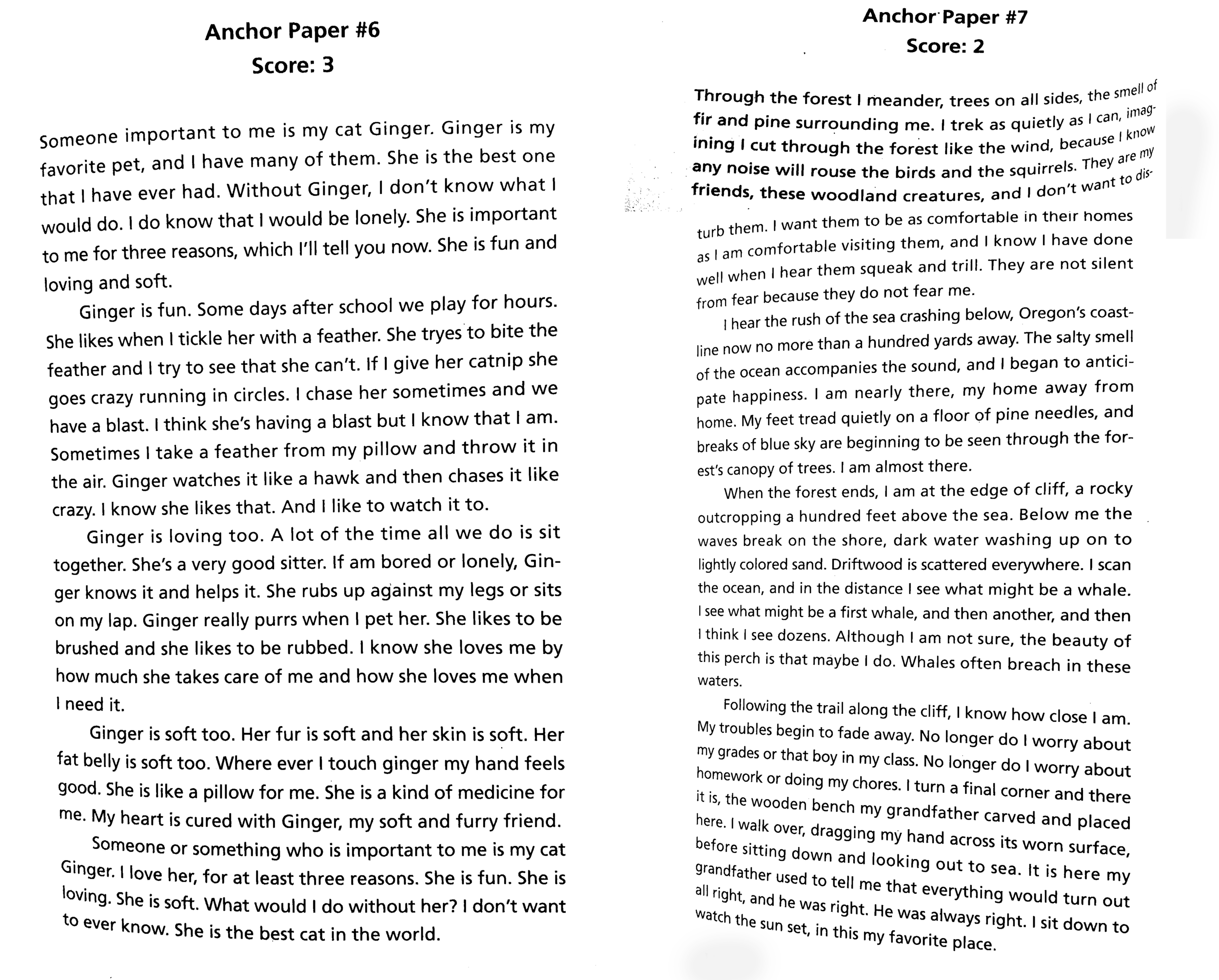 Anchor Paper #6 received a higher score because it is in a traditional 5-paragraph format. The instructions say to write a 5-paragraph response.