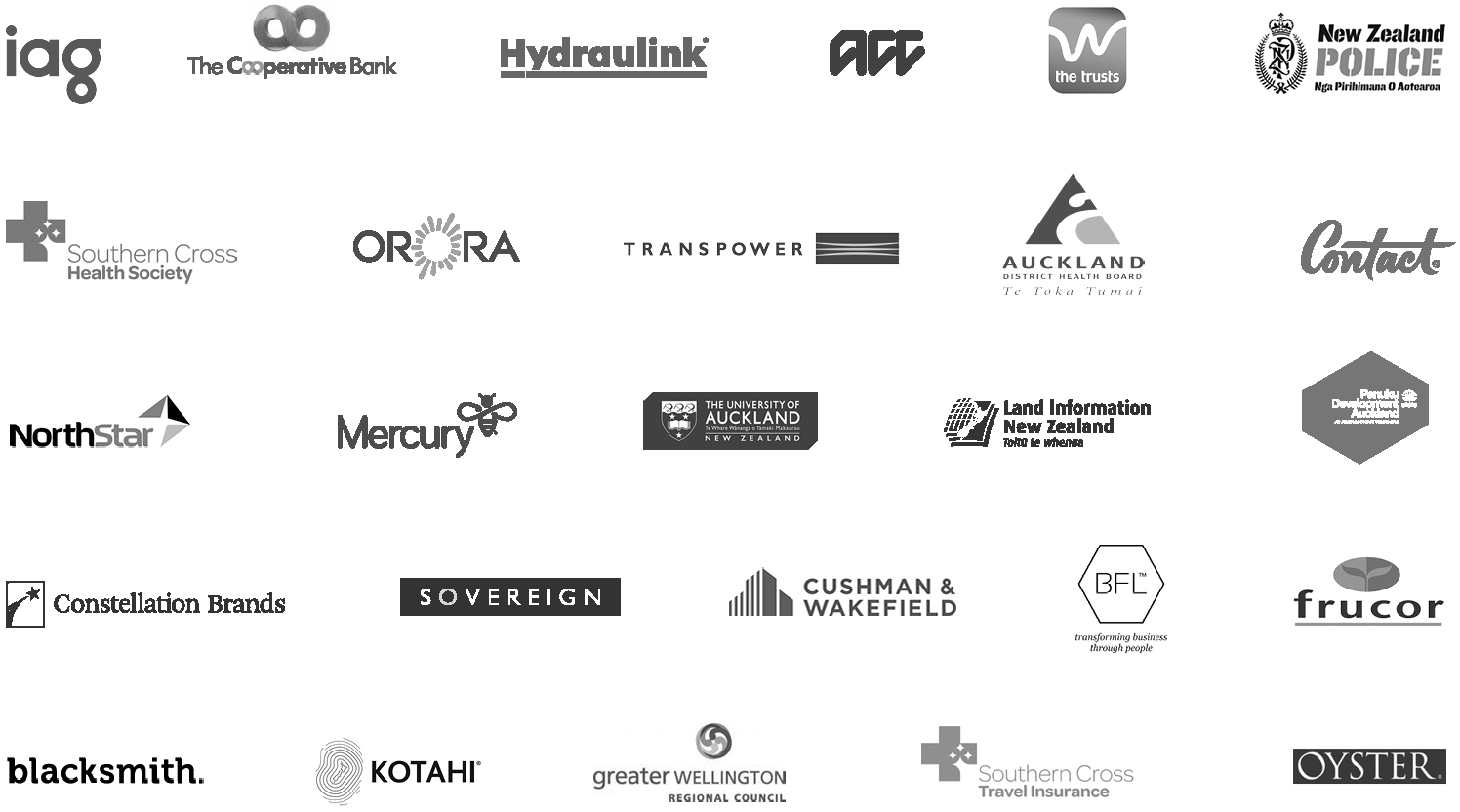 Geyser client logos.jpg