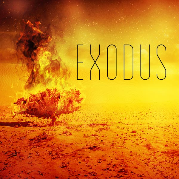 Exodus-600x600.jpg