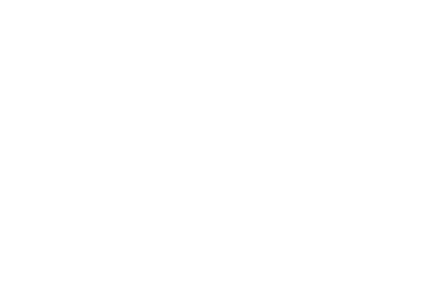 OFFICIAL SELECTION - Austin Spotlight Film Festival - 2018 (1).png