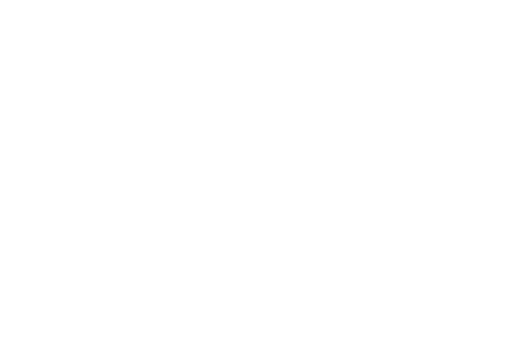 WINNER DEBUT FILMMAKER - Calcutta International Cult Film Festival - 2018 (1).png