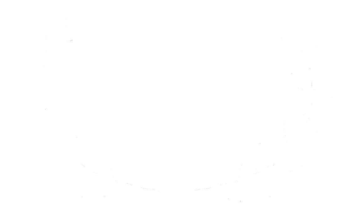 White Hollywood New Directors Honorable Mention 2018 copy.png