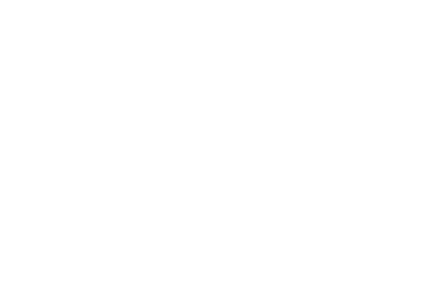 HONORABLE MENTION - Idyllwild International Festival of Cinema - USA copy.png