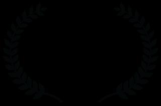 OFFICIALSELECTION-SANTIAGOINDEPENDENTFILMAWARDS-2019.png